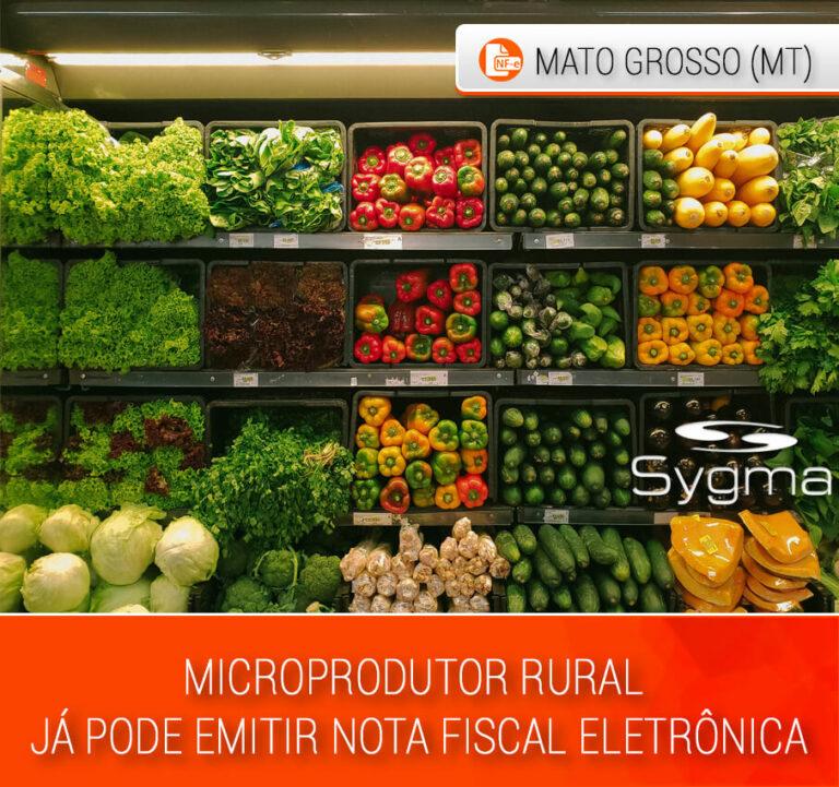 Prateleira com diversas verduras de microprodutor rural em supermercado