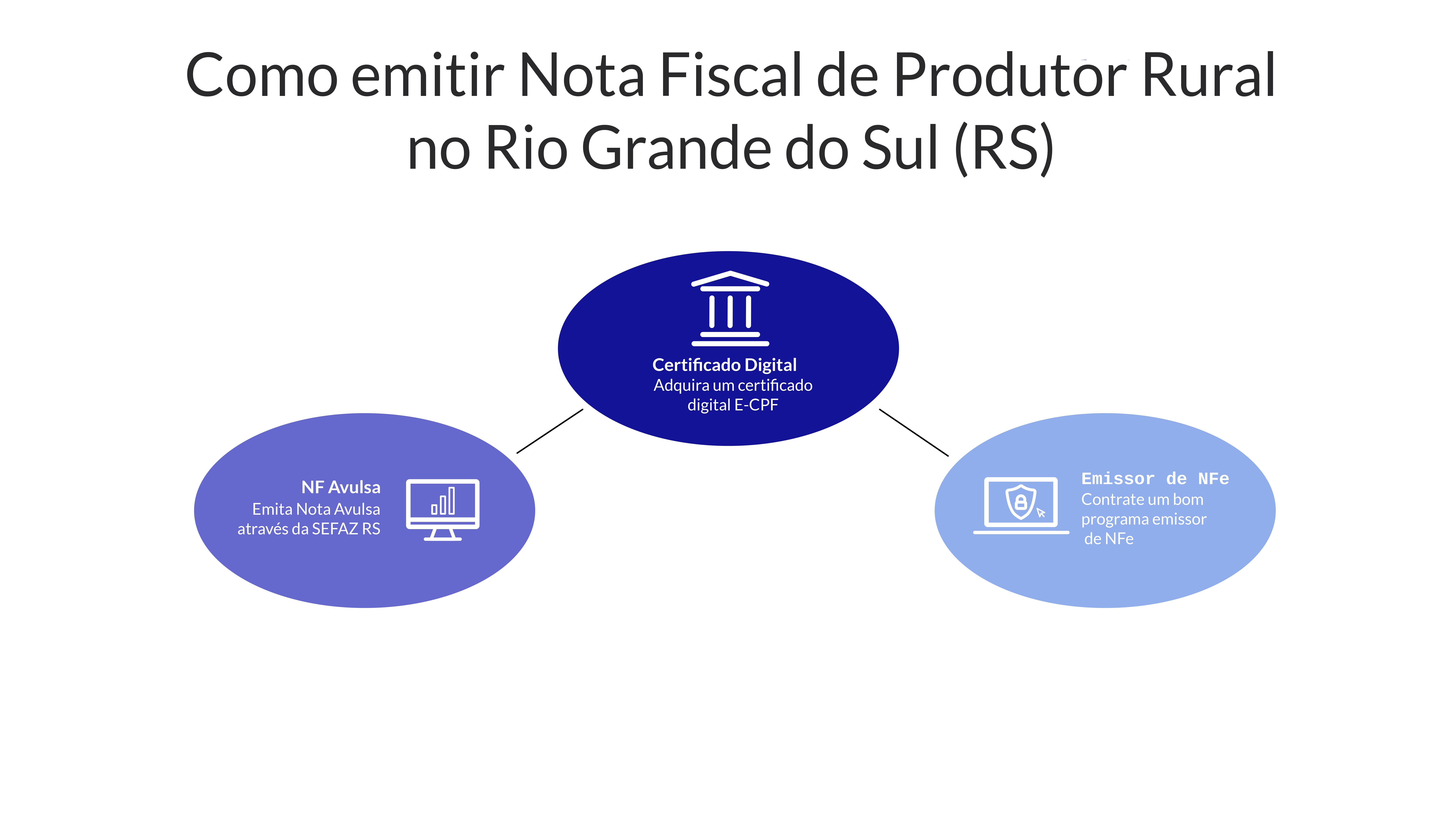 Infográfico sobre como emitir Nota Fiscal Eletrônica (NFe) de Produtor Rural no Rio Grande do Sul (RS)