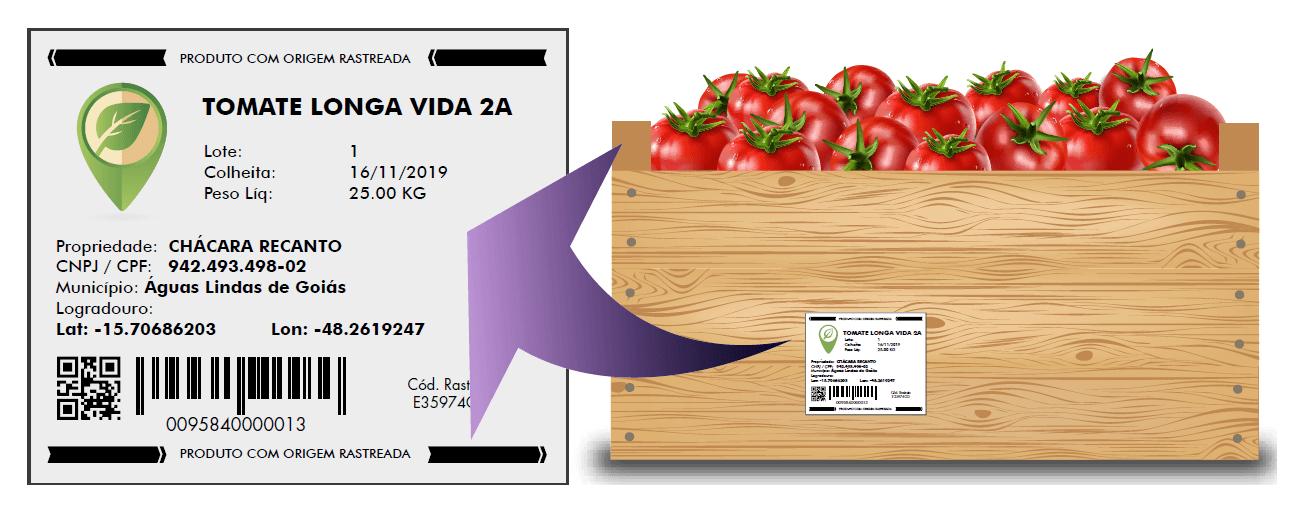 Ilustração de caixa de tomate com etiqueta de rastreabilidade hortifruti