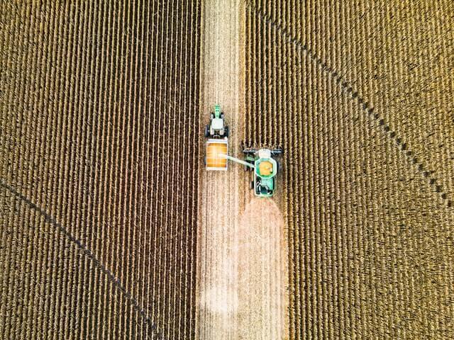 Vista aérea de plantação, com trator colhendo