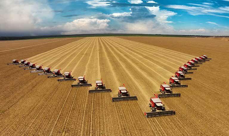 Diversas colhedeiras colhendo soja em Mato Grosso (MT)